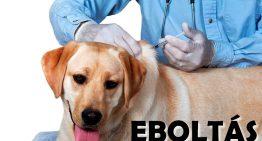 Eboltás