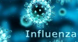Sajtóközlemény az influenza helyzetéről