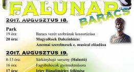 Falunap 2017